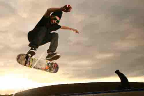 Best Skateboards For Beginners